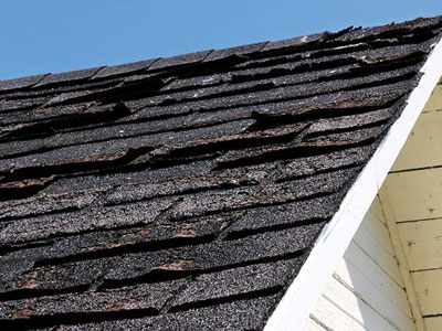 Always Roofing Images
